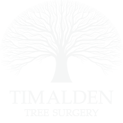 Tim Alden Consultancy
