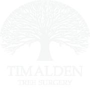 Tim Alden Consultancy